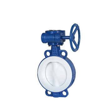 title='Full Lined PTFE wafer Butterfly Valve'