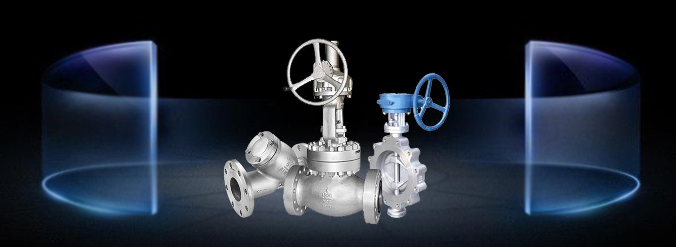 stainless steel globe valve,lug butterfly valve,stainless steel Y type trainer